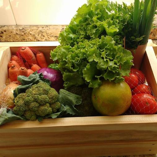 Organic Box